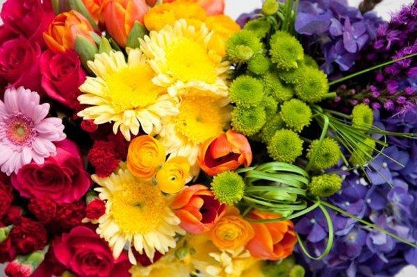 bunte-Blumen