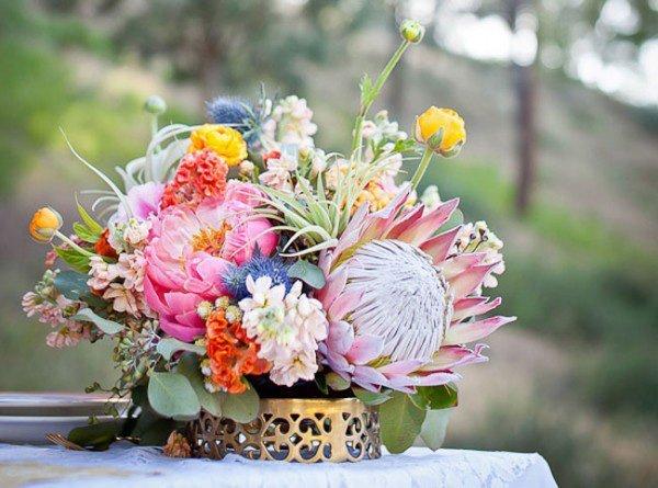 Protea Hochzeitsblume