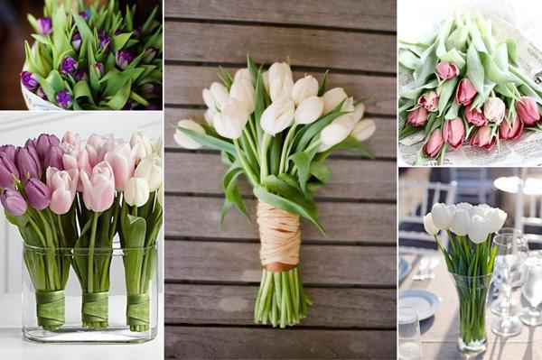Hochzeit Tulpen (2)