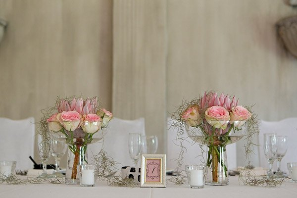 Protea Hochzeit (38)