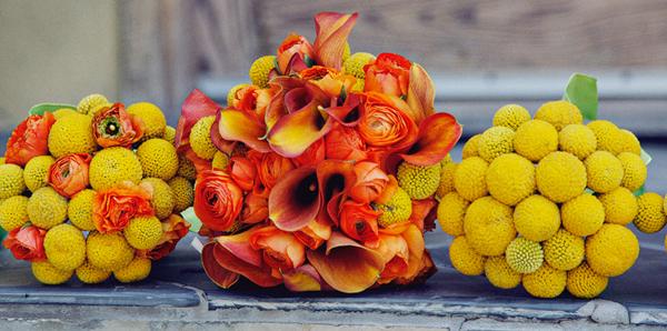 Hochzeit Herbst (1)