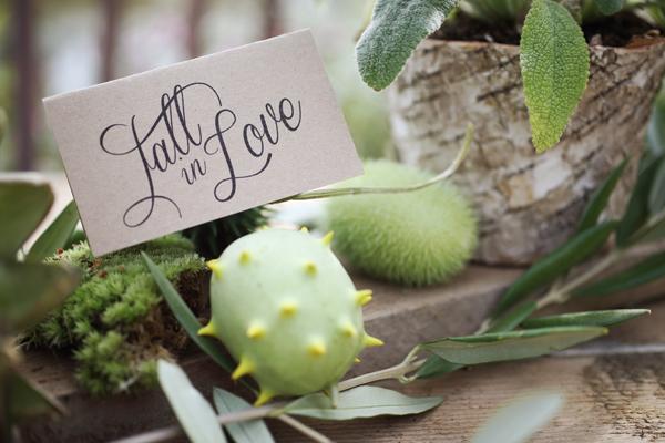 Hochzeit Herbst (49)