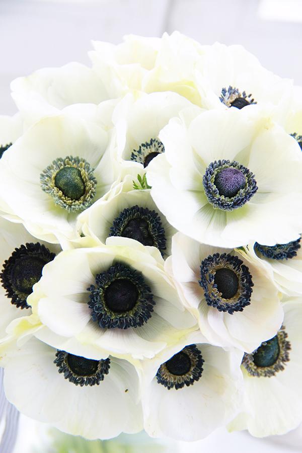Hochzeit Anemonen