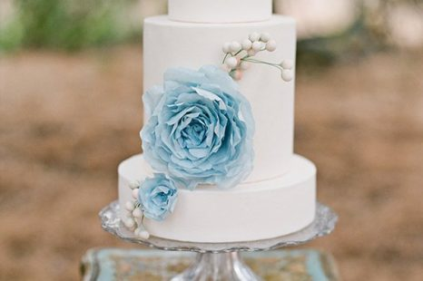 Blaue Blumen Friedatheres Com