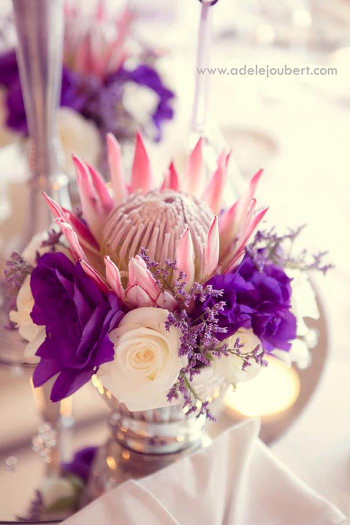 Hochzeit Protea (1)