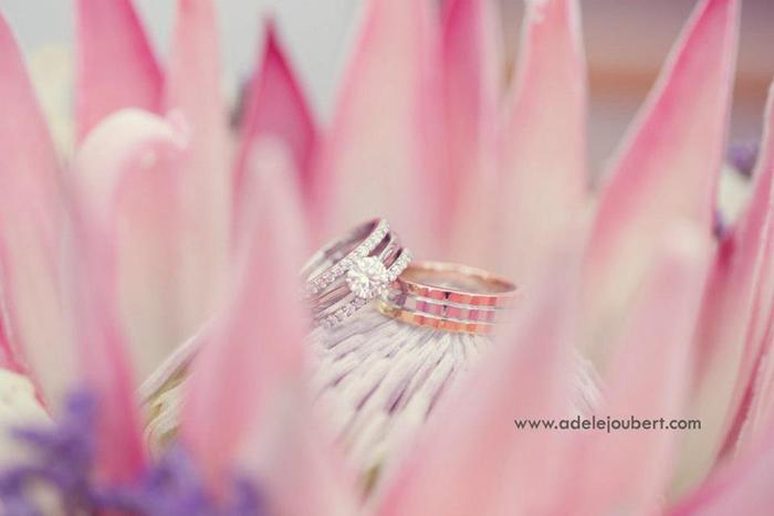 Hochzeit Protea (2)