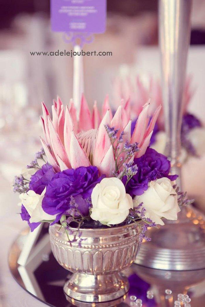 Hochzeit Protea (7)