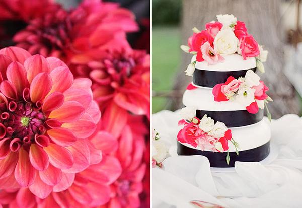 Rot-Rosa-Hochzeit-(5)