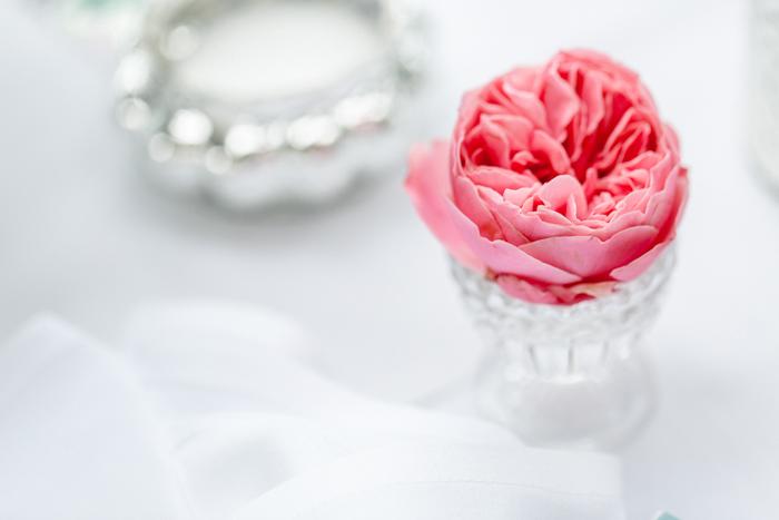 Hochzeit lila (8)