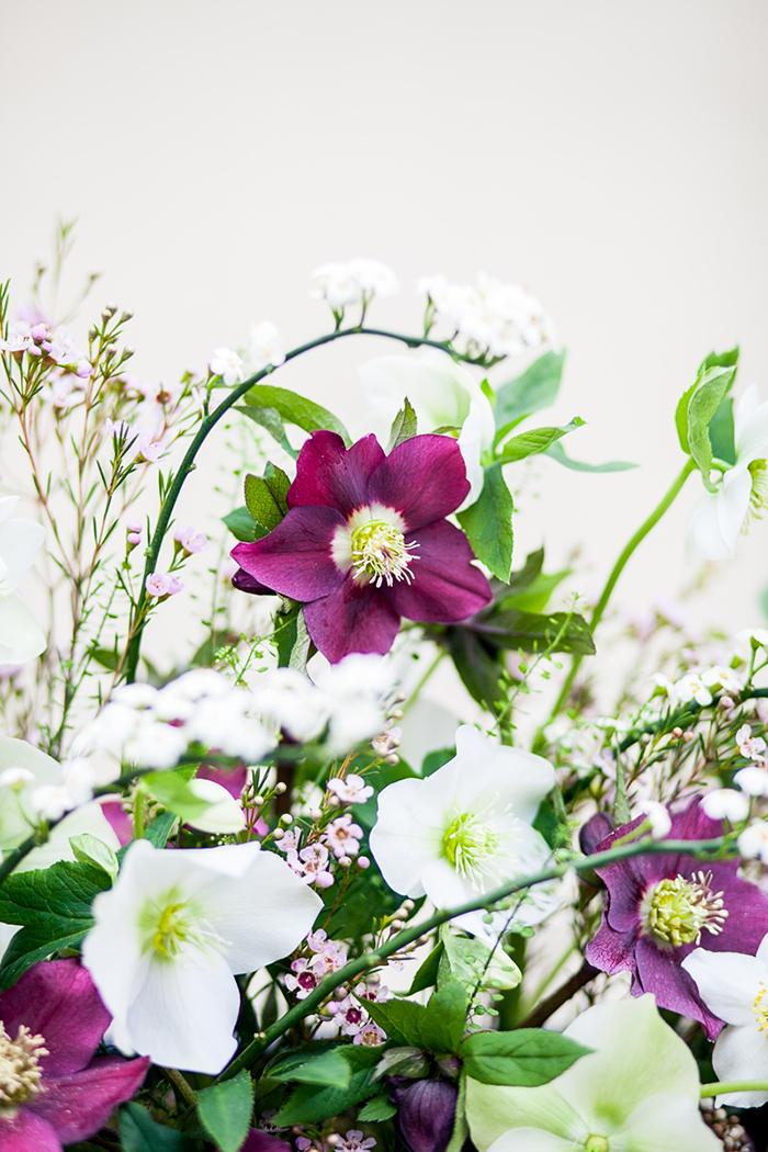 Hochzeitsblume Christrose Friedatheres Com