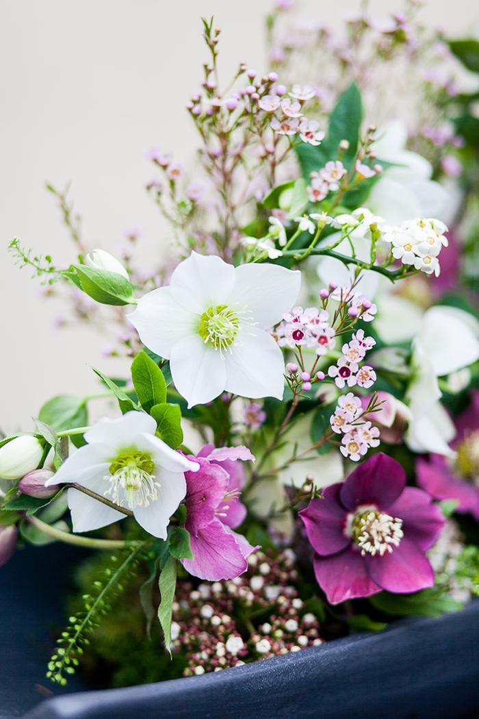 Christrose Hochzeit (10)