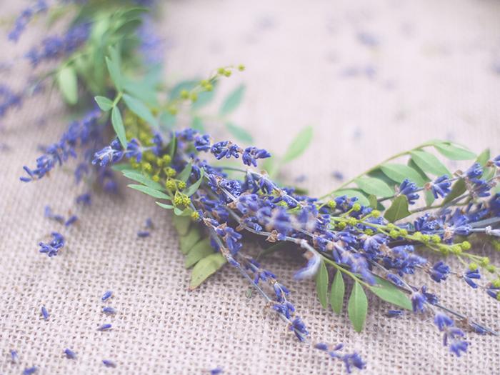 Lavendelhochzeit (1)
