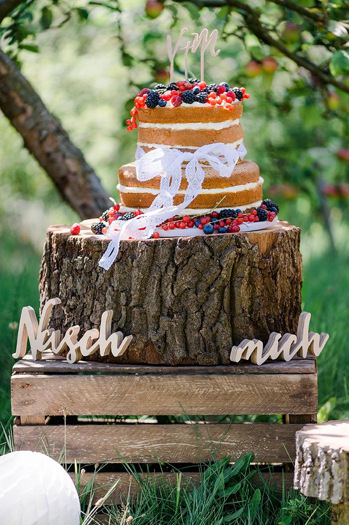 naked Cake mit Beeren (3)