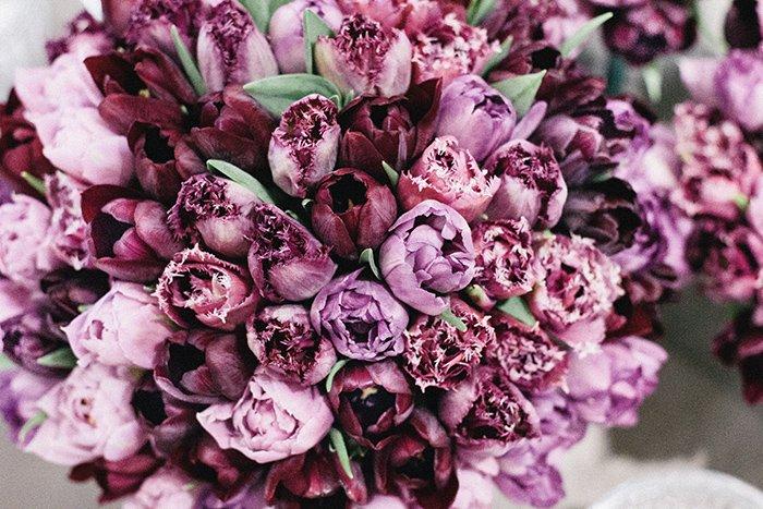 Hochzeit lila Tulpen (14)