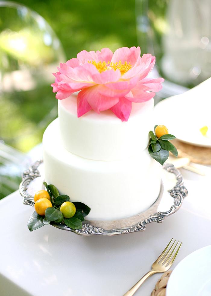 Hochzeit Pfingstrosen (7)