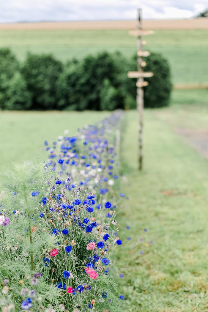 Wiesenblumen Hochzeit (1)
