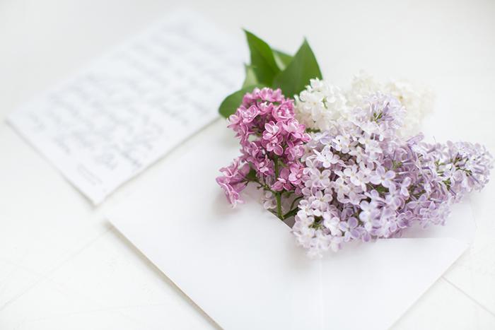 Hochzeit Flieder (17)
