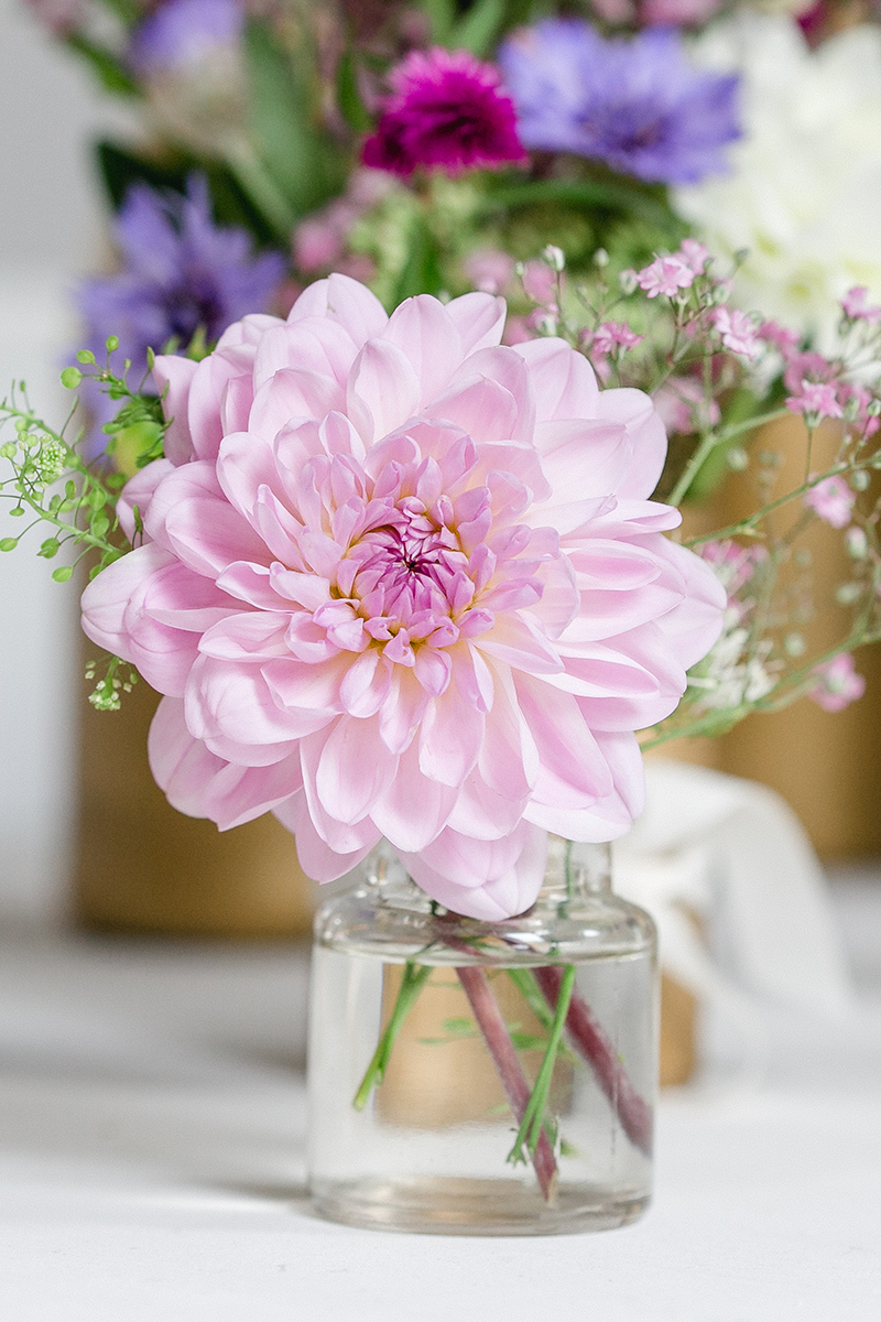 rosa-dahlien-hochzeit-1