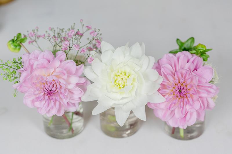 rosa-dahlien-hochzeit-2