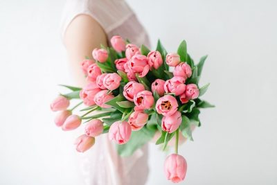 Blume des Monats März: Tulpe