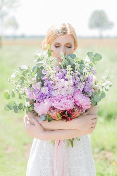 Blume des Monats Juni: Levkoje