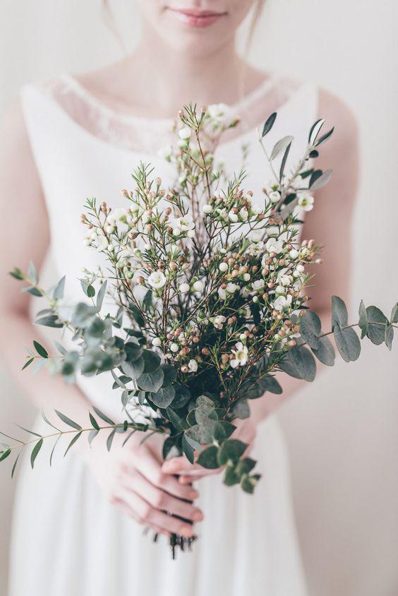Wachsblumen Das Neue Schleierkraut Friedatheres Com