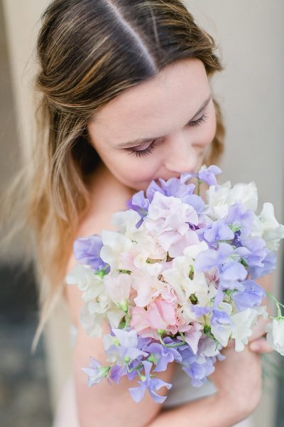 Blume des Monats Juli: Wicke