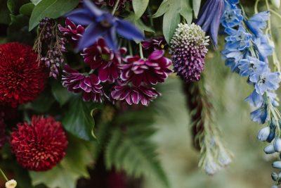 Blumen Power im Wald