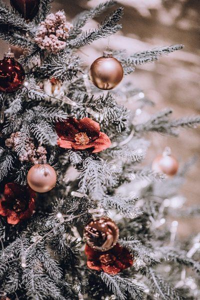 Weihnachts-Inspiration mit Pampasgras