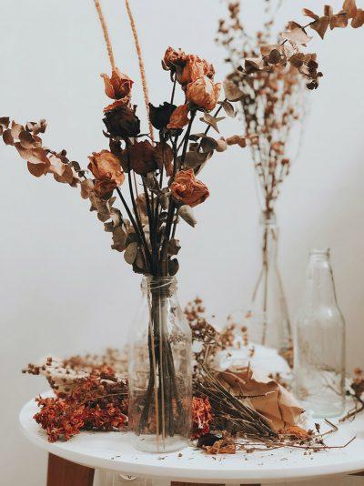 Der Trend: Trockenblumen