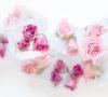 eiswuerfel mit rosen (1)
